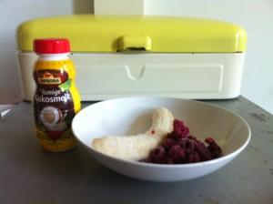 ingredienten ijs
